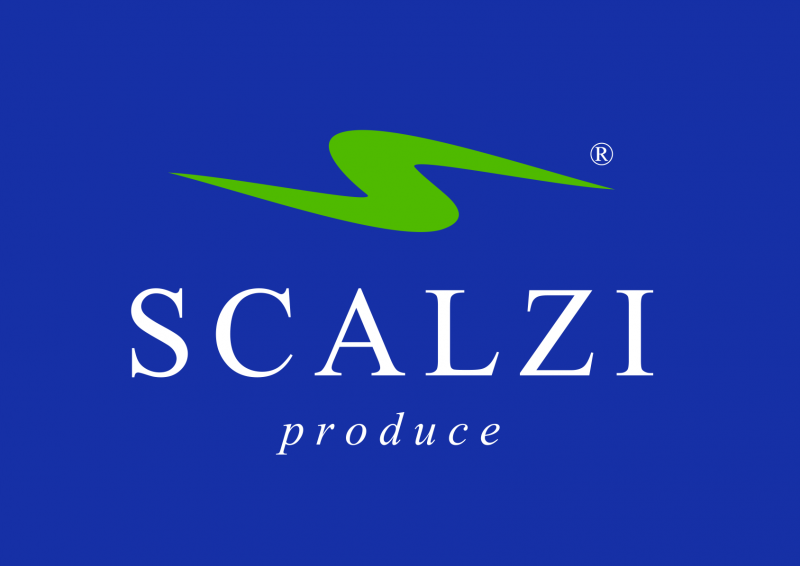 Scalzi_Blue1